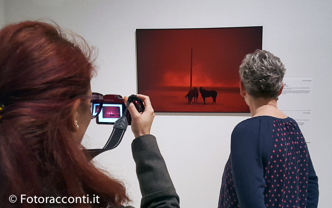 A Roma il World Press Photo 2019